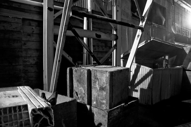 Monterey Wharf Black & White